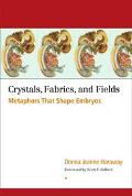 Crystals, Fabrics, and Fields Metaphors That Shape Embryos