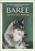 Baree The Wolf Dog