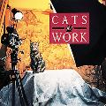 Cats at Work