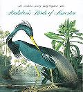 Audubon's Birds of America The Audubon Society Baby Elephant Folio