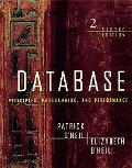 Database Principles, Programming, Performance