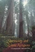 Spirituality and World Religions A Comparative Introduction