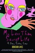 My Less Than Secret Life A Diary, Fiction, Essays