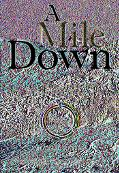 Mile Down The True Story of a Disastrous Career at Sea