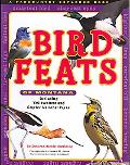 Bird Fetes