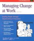 Managing Change at Work Leading People Through Organizational Transitions