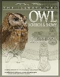Illustrated Owl Screech & Snowy