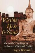 Visible Here and Now The Buddha's Teachings on the Rewards of Spiritual Practice