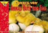 How and Why Animals Hatch from Eggs