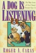 Dog Is Listening