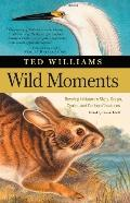 Wild Moments Reveling in Nature's Signs, Songs, Cycles, and Curious Creatures