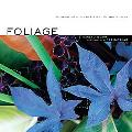 Foliage Astonishing Color and Texture Beynod Flowers