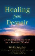 Healing from Despair : Choosing Wholeness in a Broken World