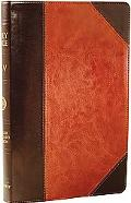 Holy Bible Protestant