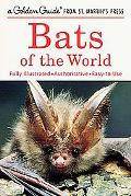 Bats of World