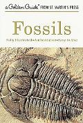 Fossils A Guide to Prehistoric Life