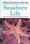 Seashore Life A Guide to Animals and Plants Along the Beach
