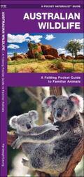 Australian Wildlife