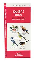 Kansas Birds An Introduction to Familiar Species