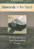 Diamonds in the Marsh A Natural History of the Diamondback Terrapin