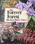 Forever Forest