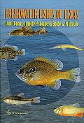 Freshwater Fishes of Texas A Field Guide