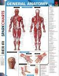 Anatomy (SparkCharts)