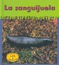 LA Sanguijuela / Leeches (Heinemann Lee Y Aprende/Heinemann Read and Learn (Spanish))