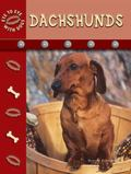 Dachshunds (Eye to Eye with Dogs)