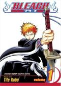 Bleach 1 Strawberry and the Soul Reapers