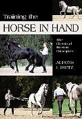 Training The Horse In Hand The Classical Iberian Principles