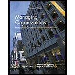Managing Organizations: Principles and Guidelines