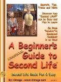 Beginner's Guide to Second Life