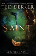 Saint: The Books of History Chronicles