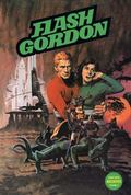 Flash Gordon Comic Book Archives Volume 4