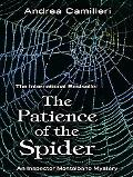 Patience of the Spider