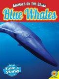 Blue Whales, with Code (Animals on the Brink)