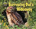 Burrowing Owl's Hideaway