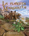Plantita Margarita