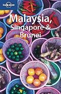 Malaysia Singapore & Brunei (Country Guide)
