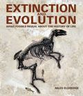 Extinction and Evolution : What Fossils Reveal about the Real History of Life