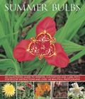 Summer Bulbs : An Illustrated Guide to Varieties, Cultivation and Care