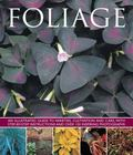 Foliage : An Illustrated Guide to Varieties, Cultivation and Care