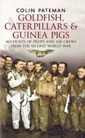 Goldfish Caterpillars & Guinea Pigs: Accounts of Pilots and Air Crews from World War II