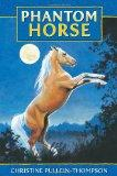 Phantom Horse: The Wild Palomino (Award Phantom Horse Books)