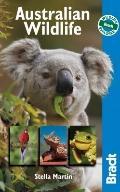 Australian Wildlife : Wildlife Explorer