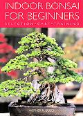 Indoor Bonsai For Beginners Selection - Care - Training