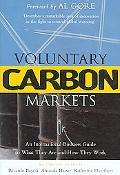 Voluntary Carbon Markets An International Business Guide to What They Are and How They Work
