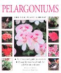 Pelargoniums The New Plant Library