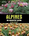 Alpines : An Essential Guide